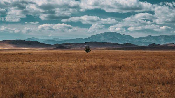 Séjour dans le Montana, Agence de Voyage sur-mesure Road TRip Evasion