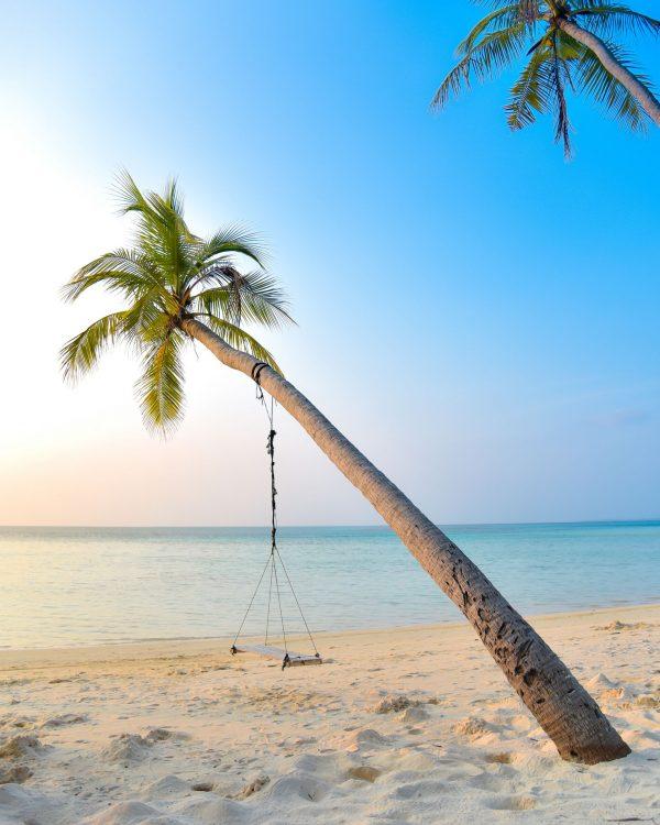 Maldives Road Trip Evasion