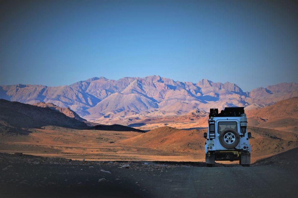 safari Road Trip Evasion