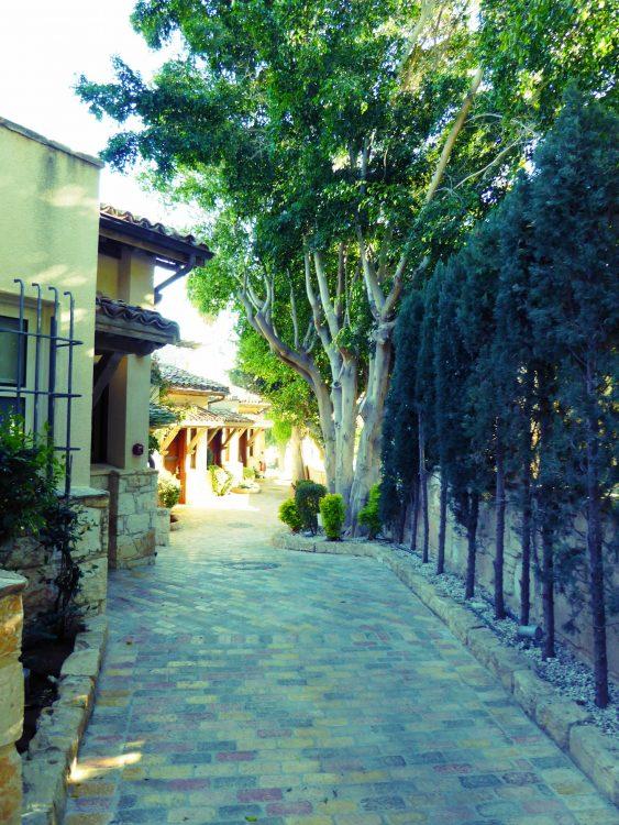 , Séjour Chypre, Agence de Voyage Roadtrip Evasion