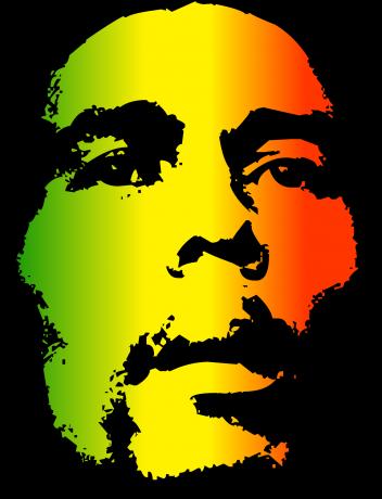 Bob Marley Road Trip Evasion